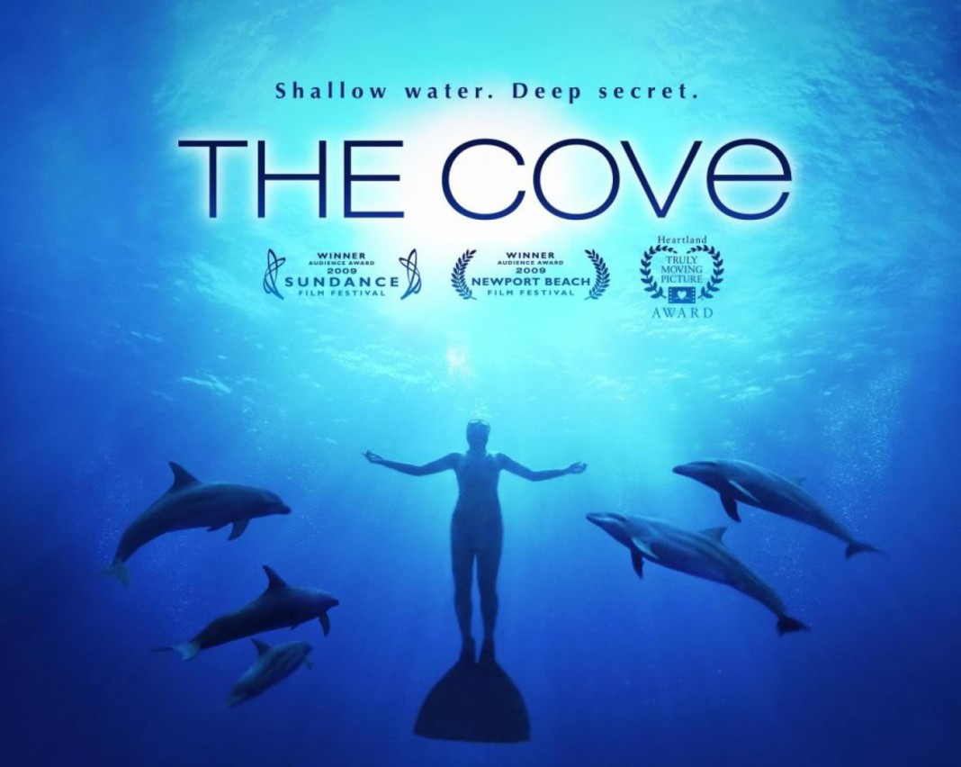 the cove response writing