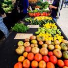 FarmersMarket09_Lorenzo_Basilio_web