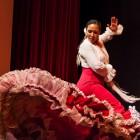 Flamenco08_Lorenzo_Basilio_web
