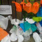 plastic-bags_duncan-hull-flickrweb